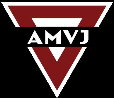 AMVJ Voetbal